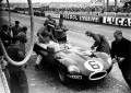 Jaguar Type D Le Mans 1955 & Jaguar Type D 1956